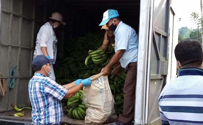 SE REALIZO LA ENTREGA  DE PRODUCTOS GUINEO A TODA LA PARROQUIA SAN ISIDRO.